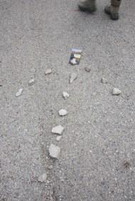Cammino Terre Mutate Tappa 8 Castelluccio di Norcia - Arquata del Tronto (94)