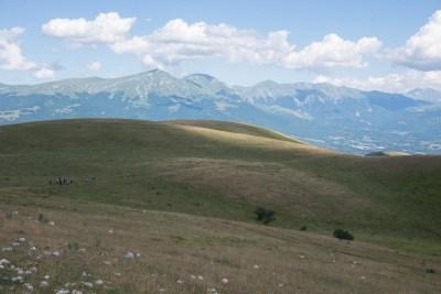 Cammino Terre Mutate Tappa 9 - Arquata del Tronto - Accumoli (29)