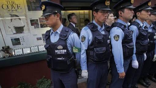 Cảnh sát Nhật bắt người Việt trồng 500 cây cần sa ở Osaka