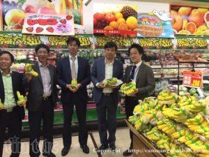 Giới thiệu chuối Việt Nam trong siêu thị Nhật Bản