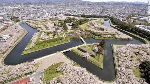 Ngắm hoa anh đào ở Hakodate