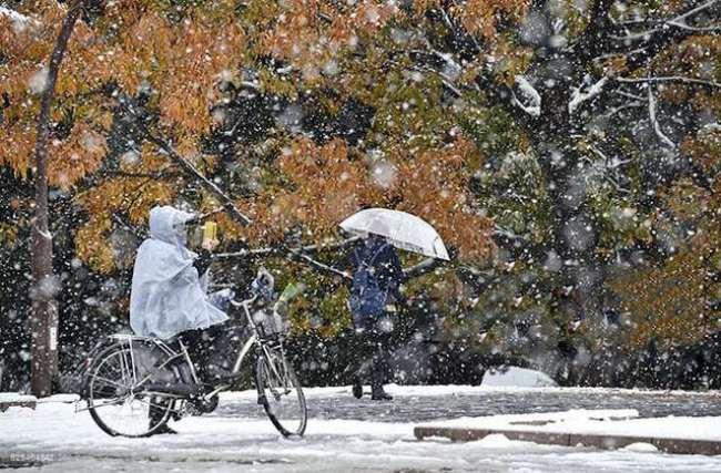 nhìn lai Tokyo đẹp đến nao lòng dịp tuyết đầu mùa