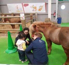 Les poneys (© Nicolas Gavet pour le salon du tourisme)