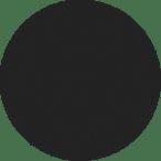 t-rex_2017_p55-sparkling-black