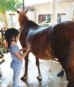 bimba-e-cavallo