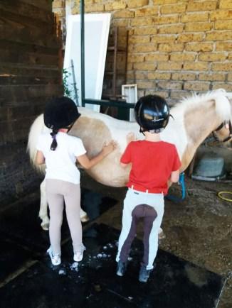 bimbi-e-pony