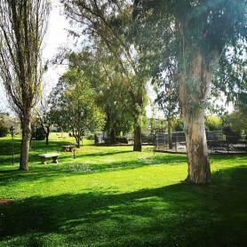 I giardini del Postiglione