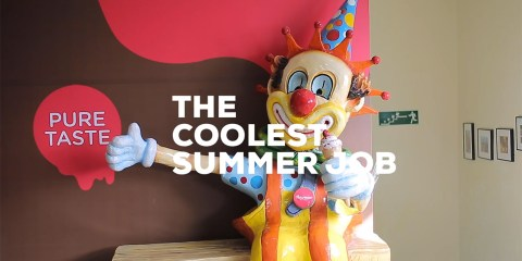 Havmor ice cream - The Coolest Summer Job