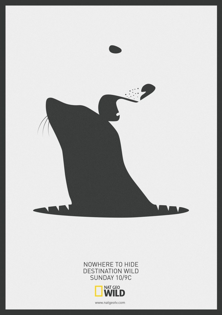 National Geographic | Destination Wild | Polar bear | Seal