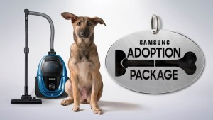 Samsung Adoption Package