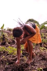 Menina plantando mandioca, principal cultivo dos Tupinambá, 2012, por Daniela Alarcon.