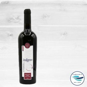 Weine aus Kampanien - Die Weine aus dem Nationalpark del Cilento - Indigeno Cardosa - autochthone Rebsorte