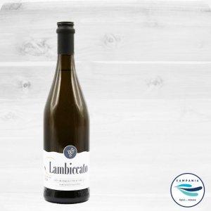 Weine aus Kampanien - Die Weine aus dem Nationalpark del Cilento - Cardosa Lambiccato