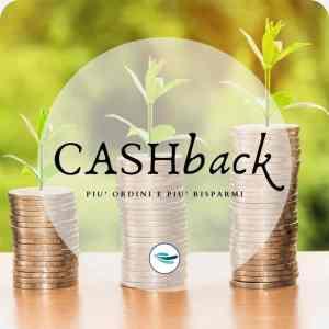 CashBack CampaniaTipica