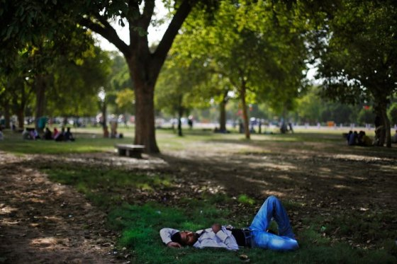 An Indian man takes a nap in the shade of a tree in New Delhi, India,