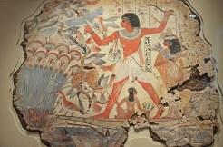 LBMEgypt