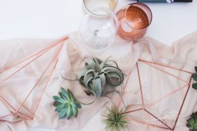 Tablescape using Airplants and Copper tones