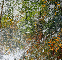leaves of various trees - painting