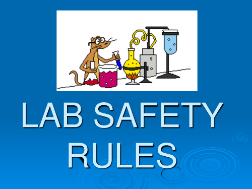 small resolution of Copy Of Science Lab Safety - Lessons - Blendspace