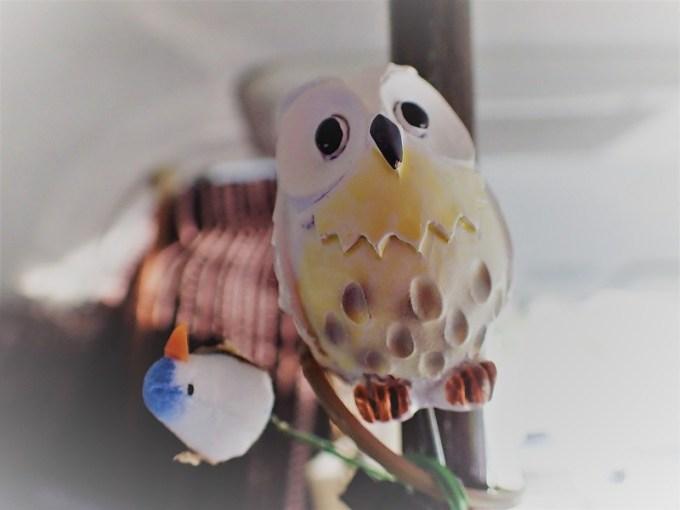 アウル!フクロウ!