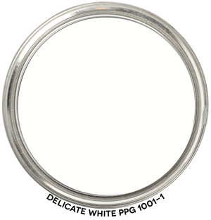 Delicate White 1001-1 by PPG Paints