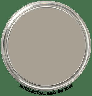 Intellectual Gray 7045 by Sherwin-Williams