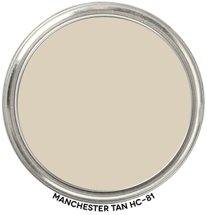 Manchester Tan HC-81 Paint Blob