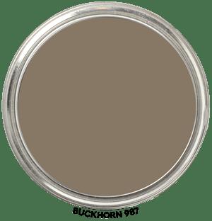 Buckhorn 987 by Benjamin Moore Paint Blob