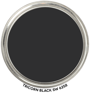 Tricorn-Black-SW-6258 by Sherwin-Williams Paint Blob