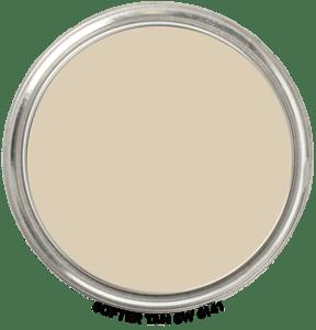 Softer Tan 6141 Paint Blob
