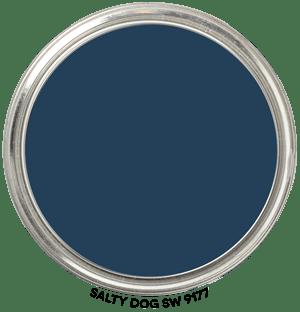 Paint Blob Salty-Dog-SW-9177