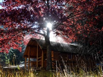 coeur d'alene scenic byway campground | lake coeur d'alene Wolf Lodge Bay idaho fall
