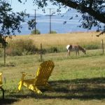 Falcon Meadow RV Campground in Falcon, outside of Colorado Springs