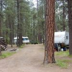 Shady RV sites at Sportsman's Campground & Mountain Cabins near Pagosa Springs Colorado
