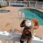 Cool off in the pool at Monument RV Resort (Fruita)!