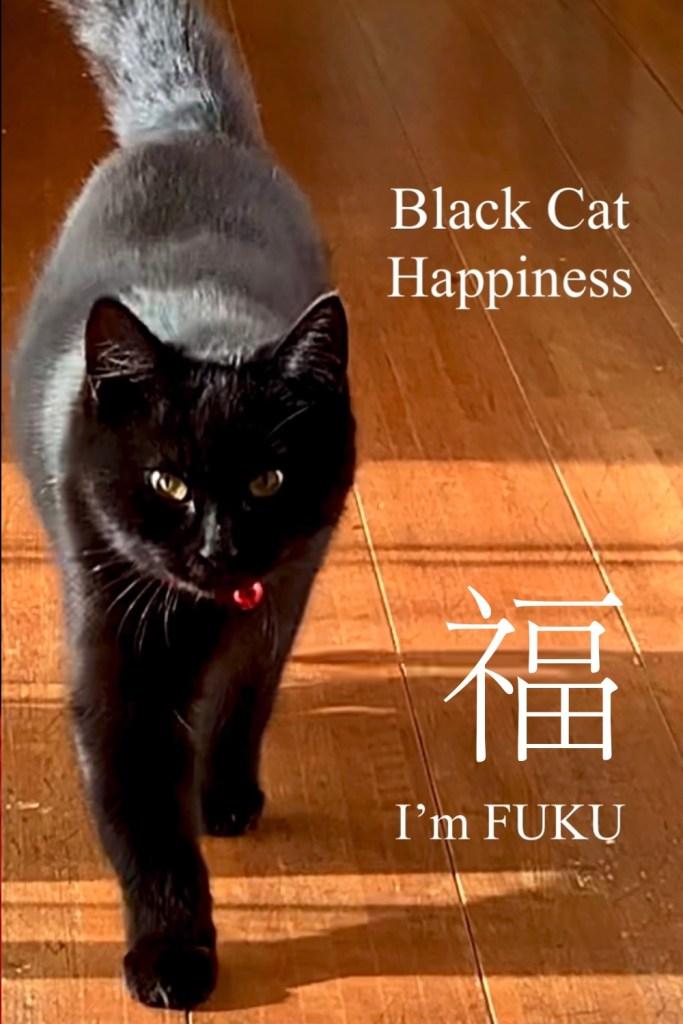 black cat Fuku