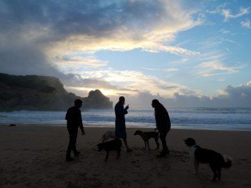 Mens en dier bij zonsopgang op het strand in Portugal