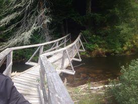 Crooked bridge August 2014