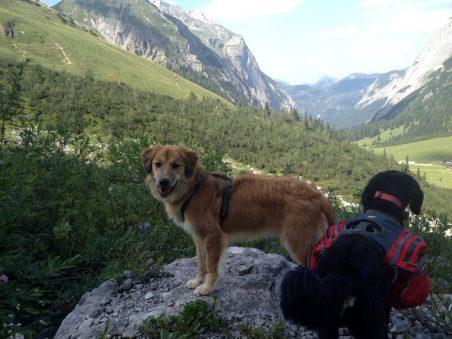 Wilma und Whiskey im Gebirge