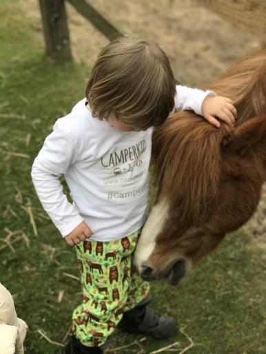 Auch Pferde mögen Babauba