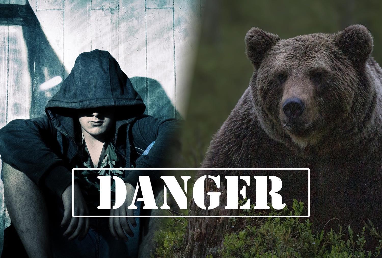 キャンプ動物被害_盗難被害
