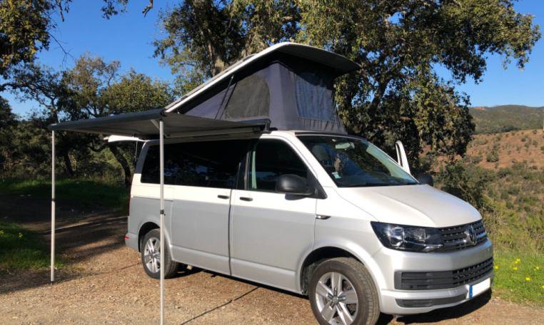 VW T6 for sale side profile.