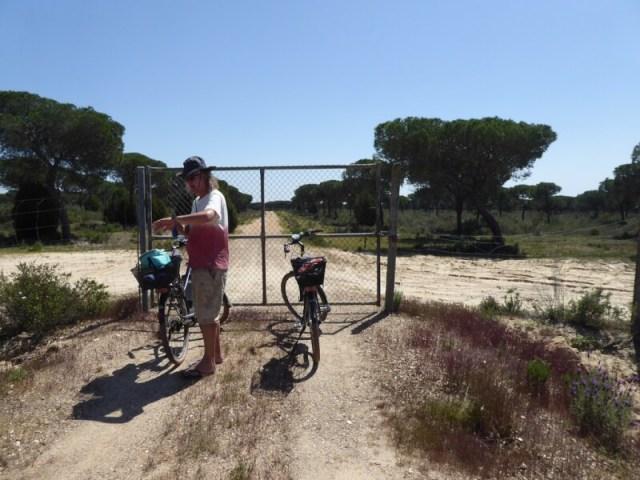 Jekunt nog zulke geweldige fietsen hebben, maar als de weg afgezet blijkt met een hermetisch gesloten hek, houdt het op. Waar? Doñana
