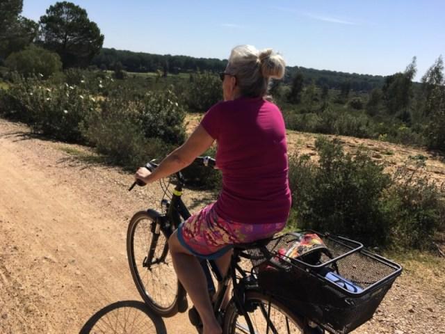 Welke techniek wordt er gebruikt in de camper om met de e-bikes te rijden? (E-bikes en accu's)