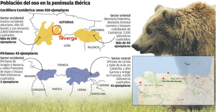 De berenpopulatie rondom de gemeente Teverga. Op de kaart zie ook de berengebieden in de Spaans-Franse Pyreneeën. Bron: La Nueva España (Regionale krant).