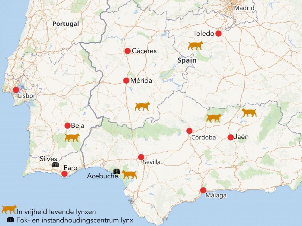 Kaart met gebieden waar de lynx zich tegenwoordig ophoudt.