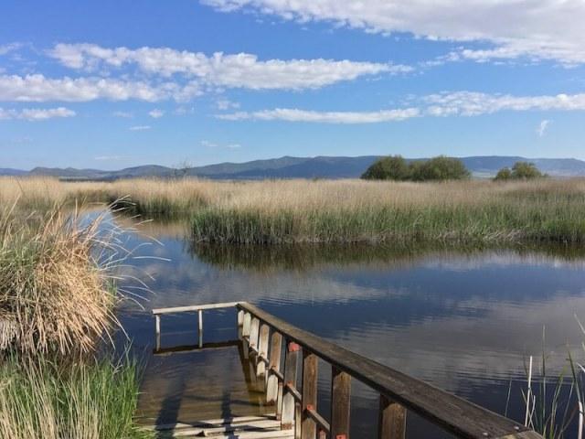Onze favoriet in de natuur is de parkeerplaats bij het nationale park Daimiel. Hier zie je de moerassen.