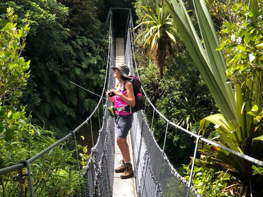 Dawson Falls walk Mt Taranaki