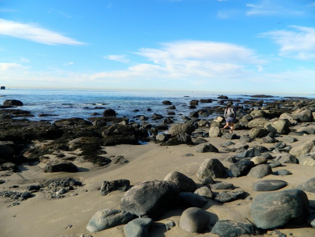 Tide Pools in Dana Point California via Campfire Chic