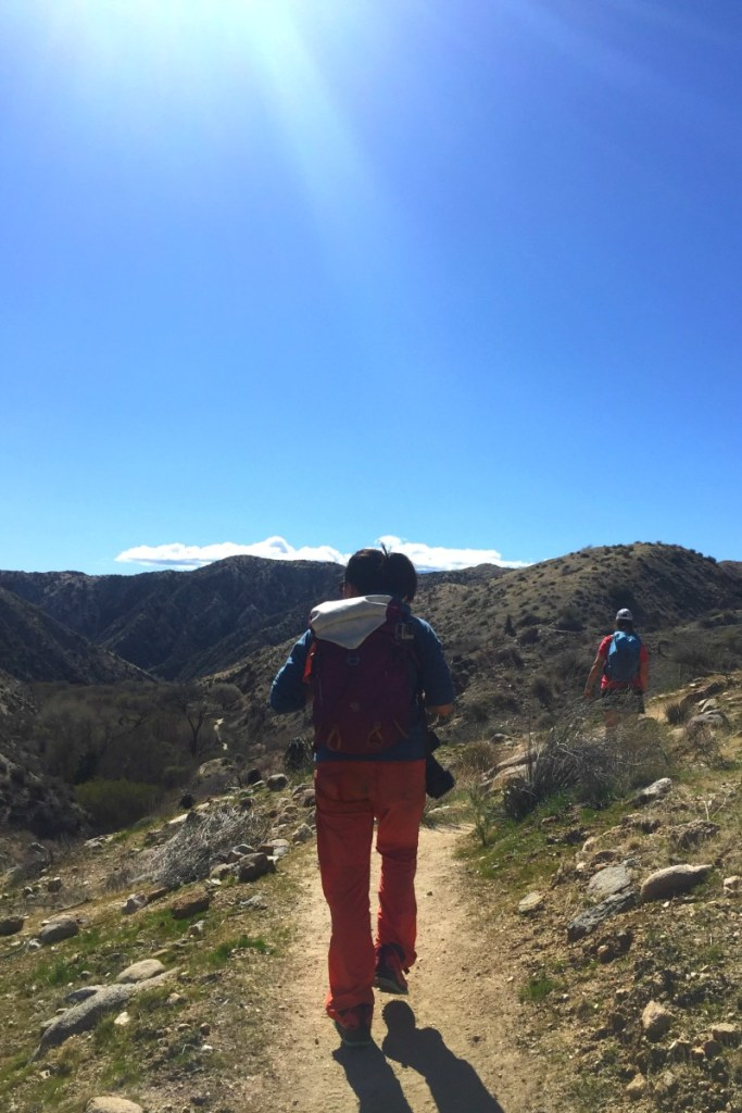 Big Morongo Canyon Preserve - California Desert Oasis Hiking Trails - Kam of Campfire Chic